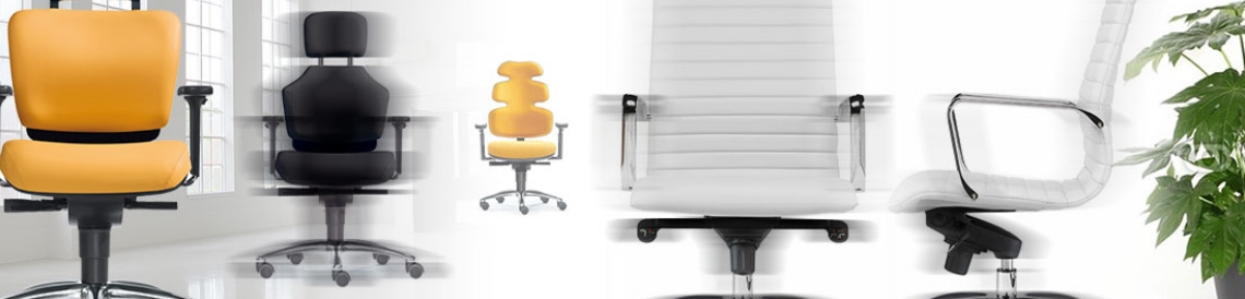 Bürostuhl-Bodensee - zu unseren Bürostühlen